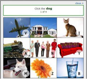 Confident reCAPTCHA captcha